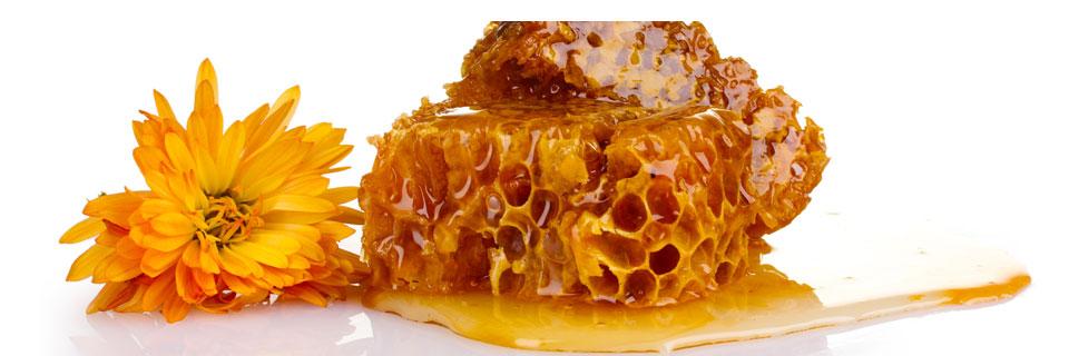Bienenmilch aus der Wabe