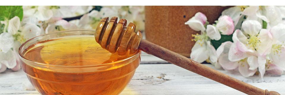 Bienenmilch mit Honig